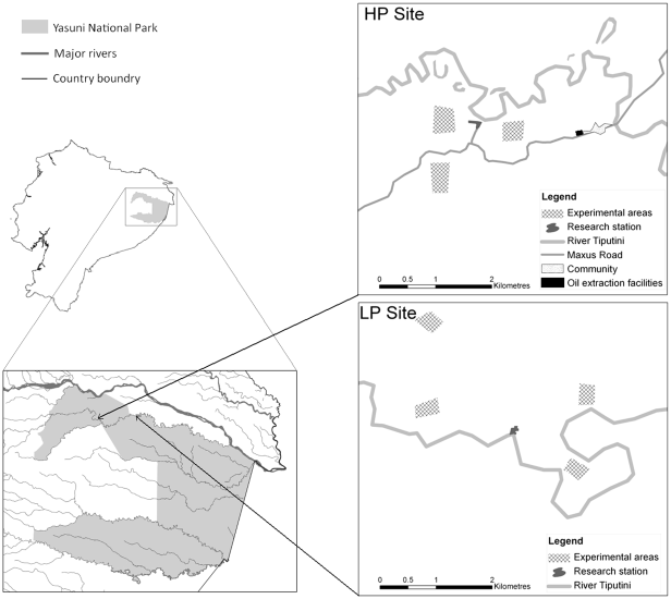 Figure 1. Locations of experiments at the LP and HP sites. show more One experiment of each type (hunter, gatherer and researcher) was conducted in each of the experimental areas used at the two sites (HP site = high hunting pressure, Yasuní Research Centre; LP site = low hunting pressure, Tiptutini Biodiversity Station).